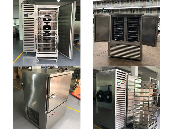 Industrial frozen fries freezer from Taizy machinery