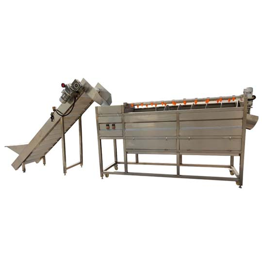 potato washer in the processing line