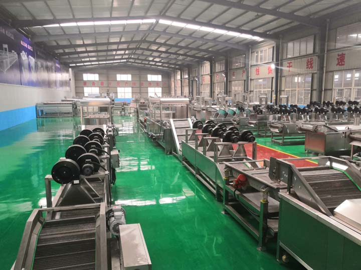 Taizy factory for manufacturing of frozen french fries machines