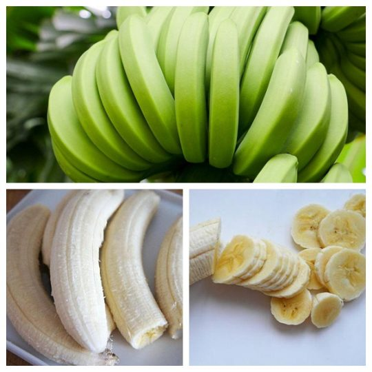 green banana for processing fried banana chips