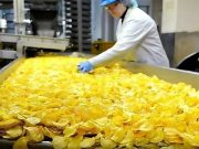 large plants for processing potato chips