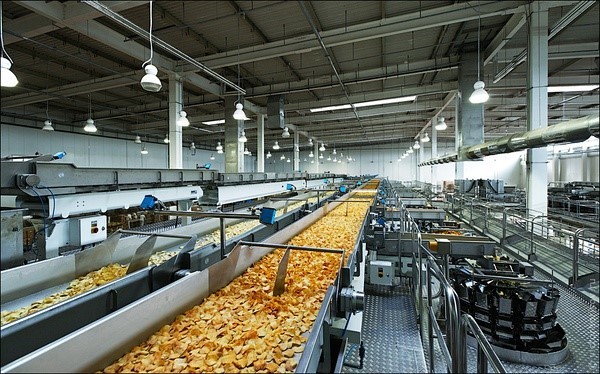 large potato chips processing plants with the automatic packer