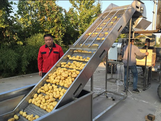 Industrial potato chips processing plant