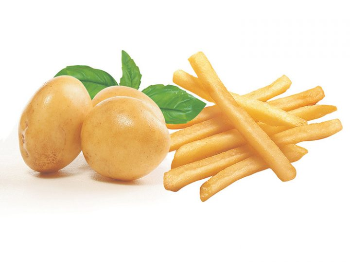 potatoes for making french fries