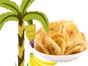 plantain chips business with plantain chips making machine