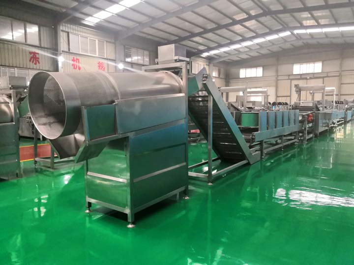Taizy fried food processing machinery