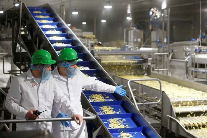 large french fries processing plant in Russia