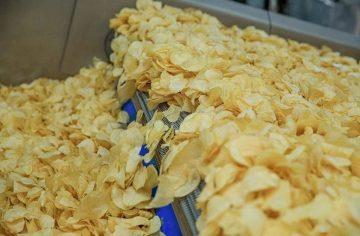 fresh-cut fried potato chips